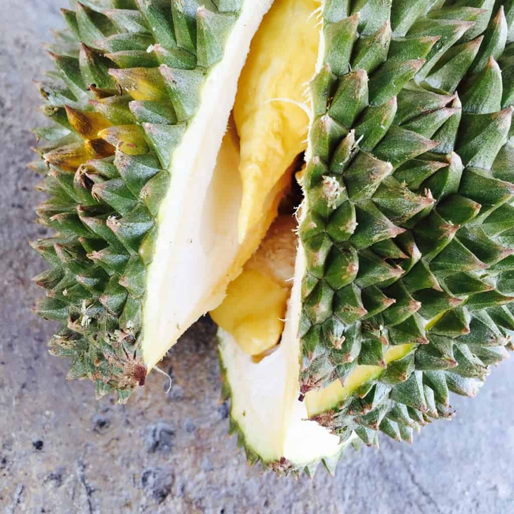 durian - 7